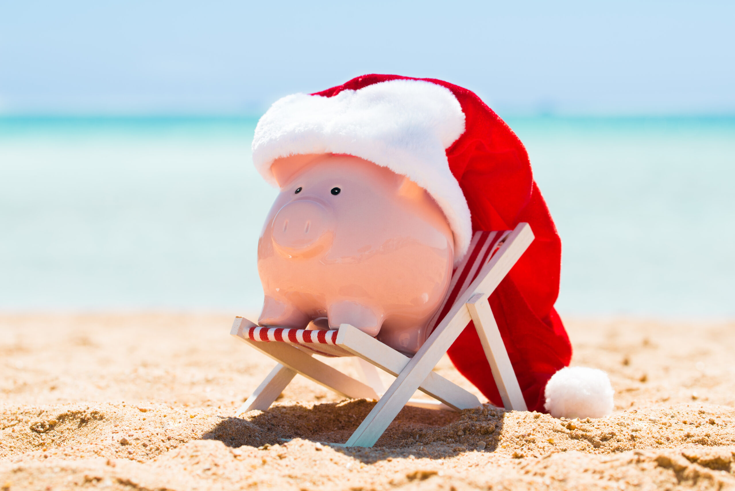 Financially stress free piggy on christmas holiday on beach